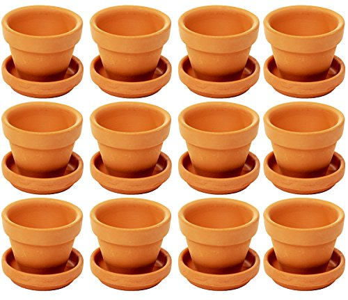 Juvale Small Terra Cotta Pots with Saucer- 12-Pack Clay Flower Pots with Saucers, Mini Flower Pot Planters for Indoor, Outdoor Plant, Succulent Display, Brown - 2.7 x 2.5 inches]()
