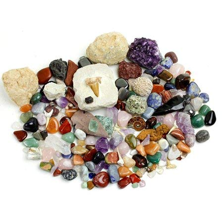 Most Popular Geology & Earth Sciences Toys