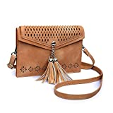 Small Crossbody Purse for Women with Double Compartment, seOSTO Tassel Phone Purse Bag for Girl