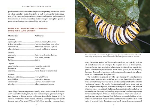 Bringing Nature Home: How You Can Sustain Wildlife with Native Plants, Updated and Expanded by Timber Press (Image #3)