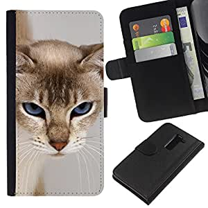 KingStore / Leather Etui en cuir / LG G2 D800 / Cat Blue Eyes felina gru?ón cara peluda