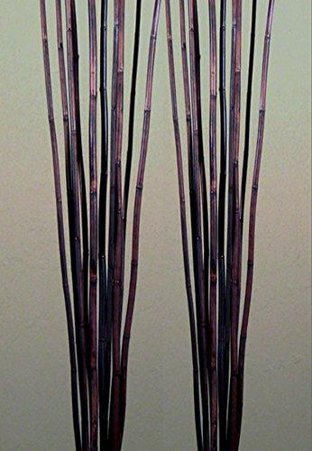 Green Floral Crafts Natural River Cane 6 Ft, Dark Brown, Pack of (Stick Vase)