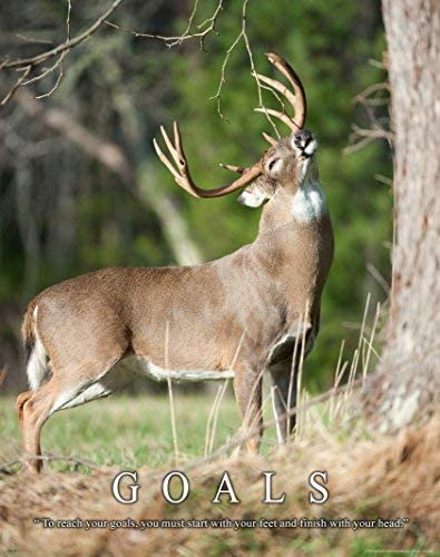 Whitetail Deer Motivational Poster Art Print 11x14 Bow Hunting Buck Commander Wall Decor Pictures Posters Prints