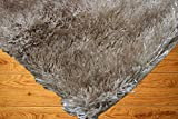 Cozy Fluffy Fuzzy Plush Solid Soft Shaggy Shag Rug Throw Contemporary Living Room Bedroom Indoor Large 5x7 Beige Tan Cream Neutral ( Aroma Beige )