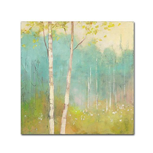Spring Fling I by Julia Purinton, 35x35-Inch Canvas Wall Art by Trademark Fine Art