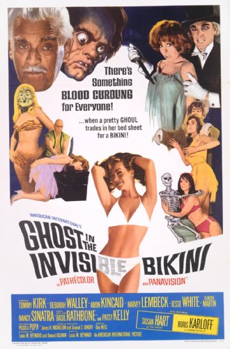 the-ghost-in-the-invisible-bikini