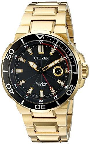 Citizen Eco Drive AW1422 50E Endeavor Watch