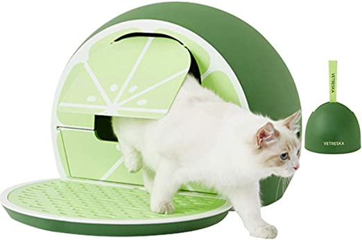 VETRESKA - Caja de Arena para Gatos con Cuchara, diseño de Frutas, Color Rosa y Verde Lima: Amazon.es: Productos para mascotas