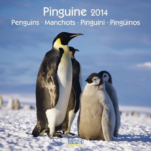 Pinguine 2014. Broschürenkalender