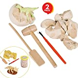 Discover the Dinosaur by ArtCreativityTM - 5 Fun Dinosaur projects - Includes Excavation Kits, Dig Set, Growing Egg, Dinosaur Glider, & Fossil Putty - Exciting Fun for Children - Best Unique Art Gift