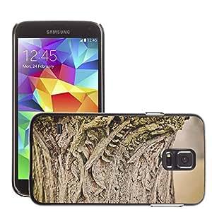 Etui Housse Coque de Protection Cover Rigide pour // M00152324 Árbol Tribu Textura Iniciar Madera // Samsung Galaxy S5 S V SV i9600 (Not Fits S5 ACTIVE)