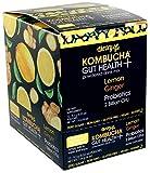 Theory of Kombucha Gut Health