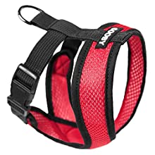 Gooby - Comfort X Head-in Harness, Choke Free Small Dog Harness with Micro Suede Trimming and Patented X Frame, Red, X-Large
