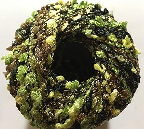 Dark Horse Yarns Jolly #111 Greener Pastures - Greens, Gold Metallic Accent Boucle 100-Gram ...