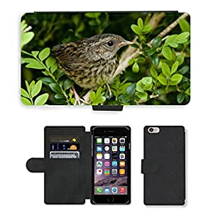 """Hot Style Cell Phone Card Slot PU Leather Wallet Case // M00111174 Blackbird Birds Fledglings // Apple iPhone 6 PLUS 5.5"""""""
