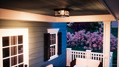 Luxury Craftsman Outdoor Ceiling Light, Small Size: 5.75''H x 12''W, with Tudor Style Elements, Highly-Detailed Design, High-End Black Silk Finish and Water Glass, UQL1248 by Urban Ambiance by Urban Ambiance (Image #1)