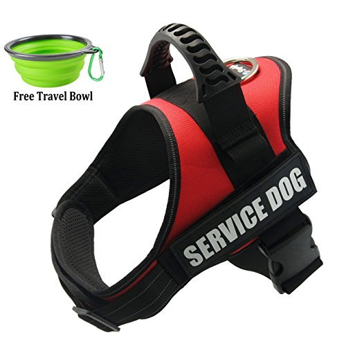 FAYOGOO Service Dog Vest, Comfortable Service Dog Harness with Reflective 'SERVICE DOG' Patches for Large Medium Small Dogs (Red, M)