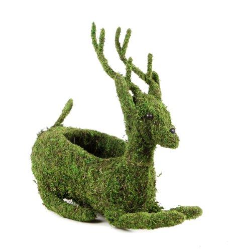 (SuperMoss (55402) Moss Reindeer Planter, Fresh Green, 6 Drop in)