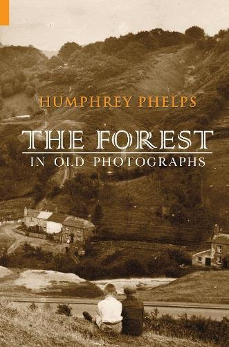 The Forest in Old Photographs PDF