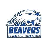 Pratt CC Medium Magnet 'Official Logo'