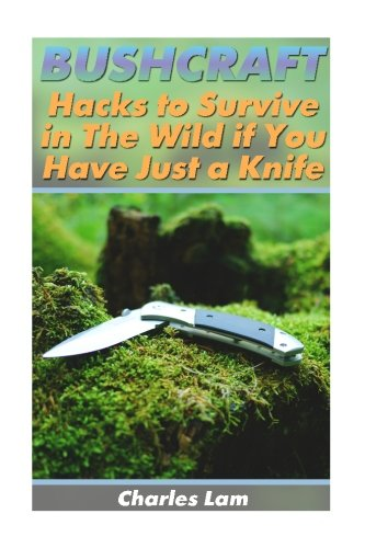 Bushcraft: Hacks to Survive in The Wild if You Have Just a Knife: (Survival Tactics, How to Survive in the Forest) (Wilderness Survival, How to Survive Natural Disaster)
