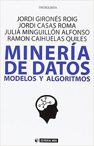 Minería De Datos. Modelos Y Algoritmos por Aa.vv. epub