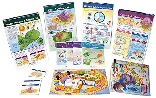 NewPath Learning 74-6701 From Molecules to Organisms Skill Builder Kit by New Path Learning