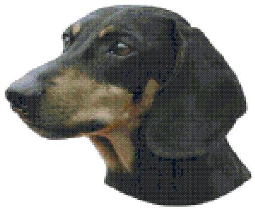 (Dachshund Dog Portrait Counted Cross Stitch Pattern)