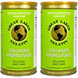 Great Lakes Gelatin, Collagen Hydrolysate, Collagen Joint Care, Grass-Fed, Non GMO, 16 oz, 2-Pack