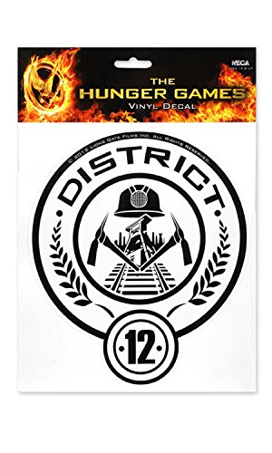 The Hunger Games Girl on Fire District 12 -