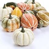Factory Direct Craft Autumn Mixture of Assorted Gourds and Pumpkins for Table Scatters 12 Pieces