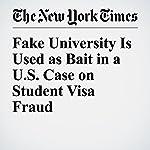 Fake University Is Used as Bait in a U.S. Case on Student Visa Fraud | Liz Robbins