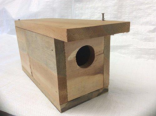 QTY 2/BIRD HOUSE KITS/ /2 DIY BIRDHOUSE/CRAFTS/KIDS-FAMILY PROJECT/PAINT/BUILD