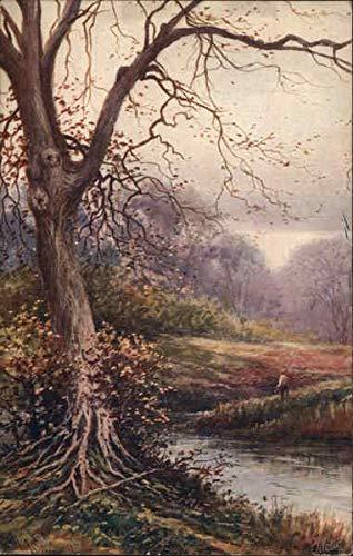 Picturesque Devon, England Art Original Vintage Postcard