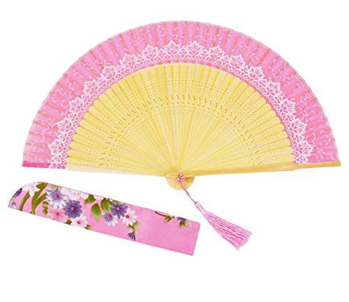Meifan Noble Silk Retro Elegant Lace Pattern Printed Women/Lady/Girl Folding Fans, 100% Handmade Oriental Chinese / Japanese Vintage Style Hand Held Silk Fold (Noble Lace)