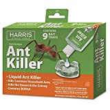 Harris Ant Killer, 3oz Liquid Borax Value Pack Includes 9 Bait Trays for Indoor Use