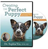 Creating the Perfect Puppy (Lecture)