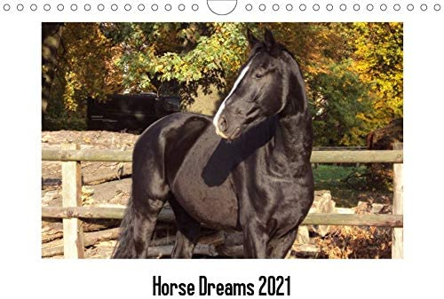 Horses Dreaming Pferde Kalender 2021 Wandkalender Wall Calendar N152 45x31,5 cm