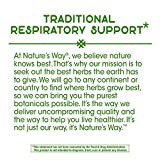 Nature's Way Ivy Extract from English Ivy Leaf 50
