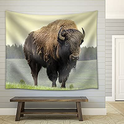 Bison in Grasslands of Yellowstone National Park in Wyoming in The United States of America Fabric Wall