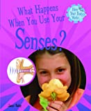 What Happens When You Use Your Senses?, Jacqui Bailey, 1404244271