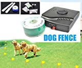 Esky Waterproof Electronic Fence Dog Shock Collar System