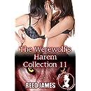 The Werewolf's Harem Collection 11