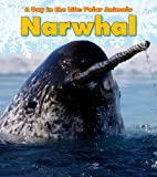 Narwhal, Katie Marsico, 143295332X