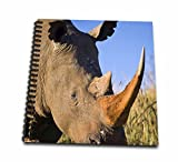 3dRose db_208788_2 White Rhinoceros Itala Game Reserve, Kwazulu-Natal, South Africa Memory Book, 12 by 12''