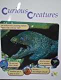 img - for Curious Creatures (Curious Creatures, 2002 k12) book / textbook / text book
