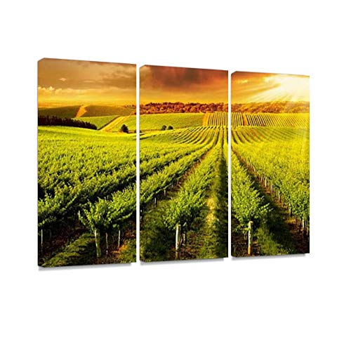Winery Gold Print On Canvas Wall Artwork Modern Photography Home Decor Unique Pattern Stretched and Framed 3 Piece