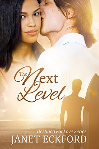 The Next Level (Destined For Love Book 1)
