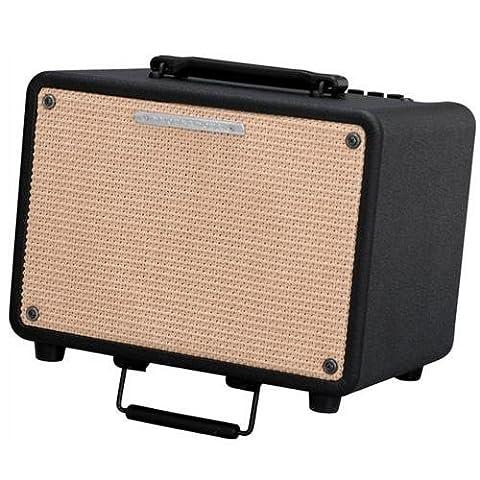 Ibanez Troubadour T30 30W Acoustic Combo Amp Black (Ibanez Troubadour)
