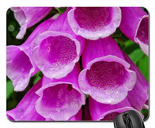 (Mouse Pad - Common Foxglove Digitalis Purpurea Thimble Plant)